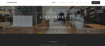 Screenshot Homepage Lingenhel